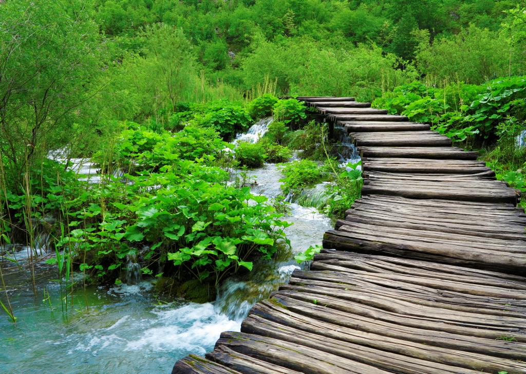 stairway_to_heaven_tenzin_jampa_2015